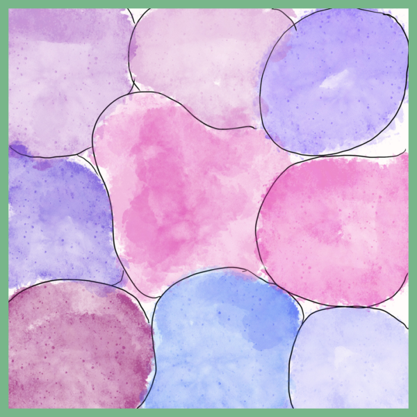 pluktuinontwerp rose paars